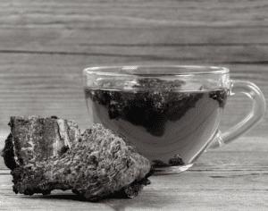 Chaga Mushroom: The Anti-Oxidant Superfood?