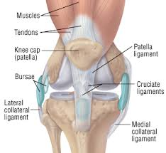 Patellar Tracking Disorder-Symptoms, Causes, Treatment and Prevention